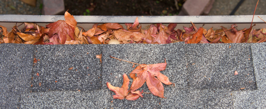 cleaning gutters for yard drainage